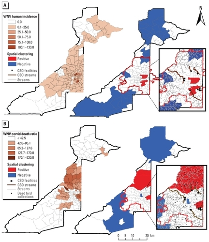 The Risk of West Nile Virus Infection Is Associated with