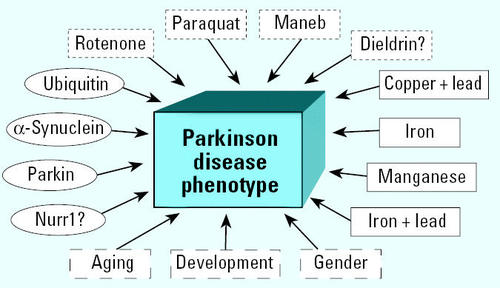 Developmental Pesticide Models of the Parkinson Disease