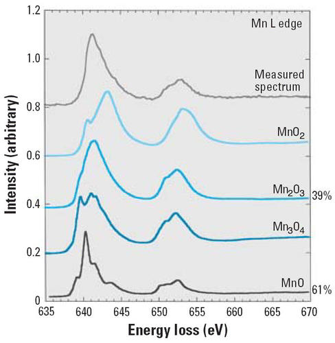 db6b8fc0b0 Translocation of Inhaled Ultrafine Manganese Oxide Particles to the ...
