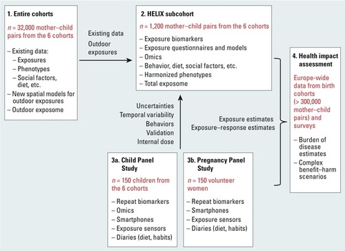 The Human Early-Life Exposome (HELIX): Project Rationale and